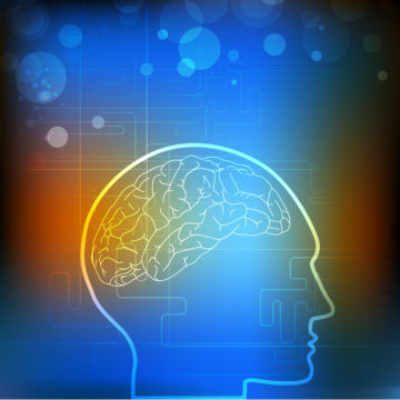 Optimal Brain Performance Techniques for Leaders